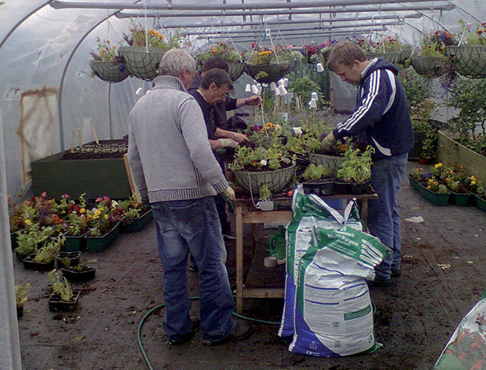Working in the WALK Gardening & Horticulture Social Enterprise