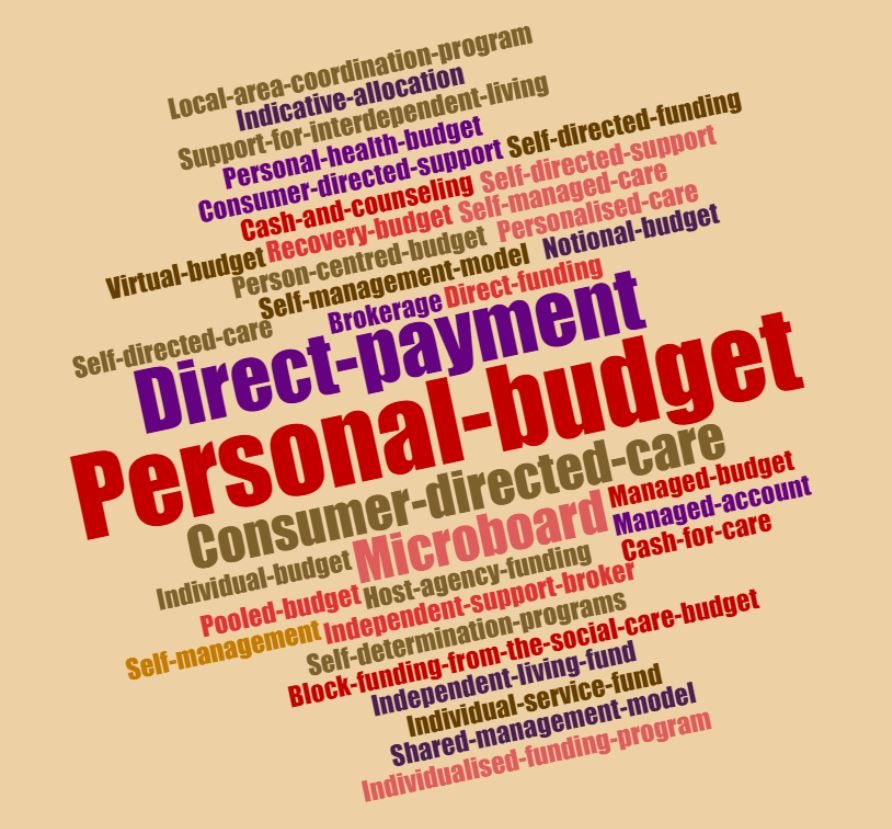 what are personal budgets and what have we learned from